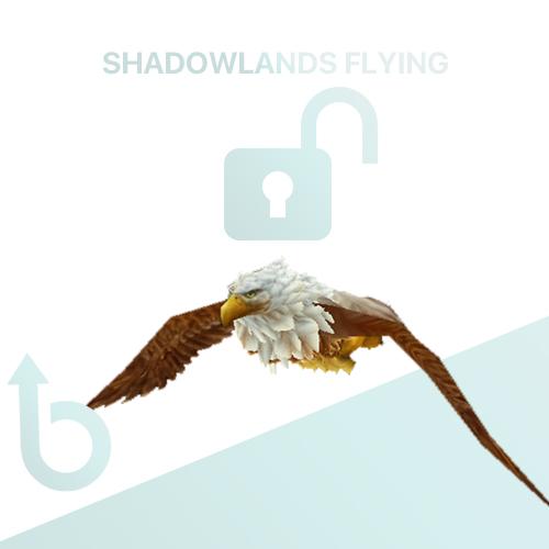 Shadowlands Flying – Unlock Service